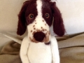 Toy Style Springer Spaniel Commission